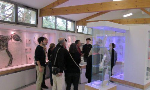 Muséum de l'Ardèche Balazuc visite 2