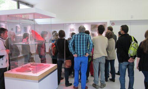 Muséum de l'Ardèche Balazuc visite