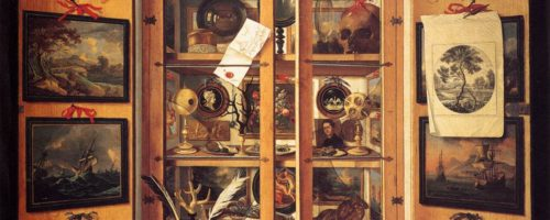 cabinet de curiosité - wikipédia - Ateliers Mercredis Sciences - Lab'bio